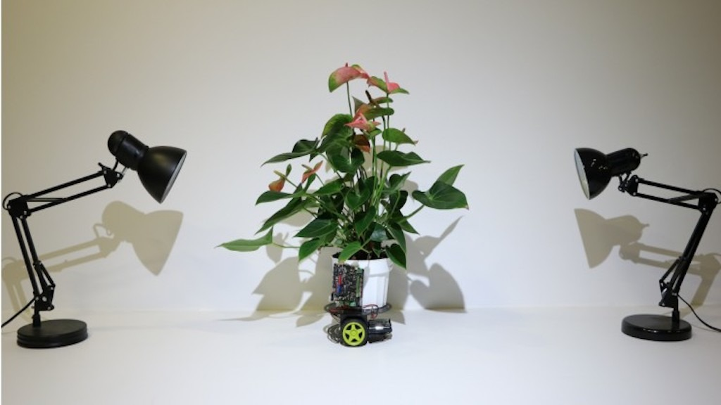 MIT Researchers Create Autonomous Cyborg Houseplant on Wheels