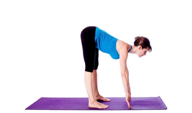 Image result for Standing forward bend