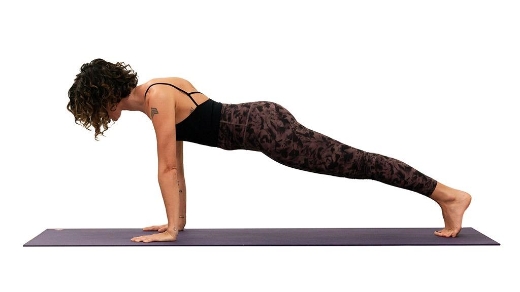 Phalakasana Plank Pose Gaia