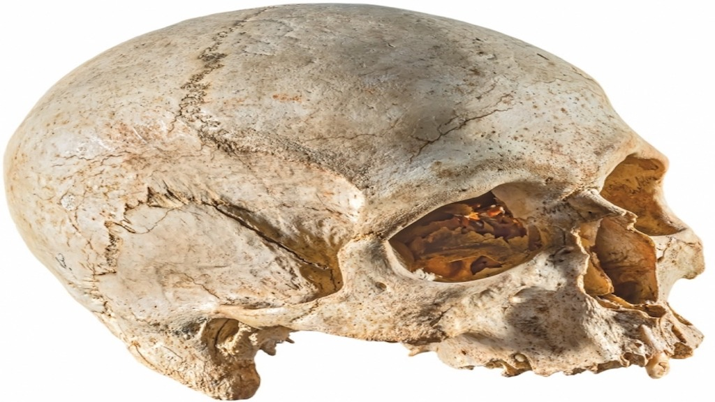 Are Malta's Secret Skulls The Remnants Of Ancient Astronauts?