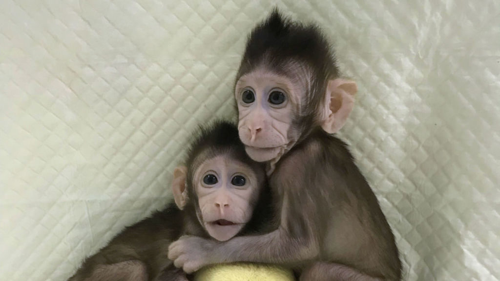 Embargoed to 1700 Wednesday January 24