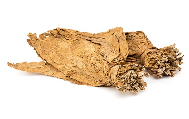 Benefits of Plant Medicines for Smudging   Gaia