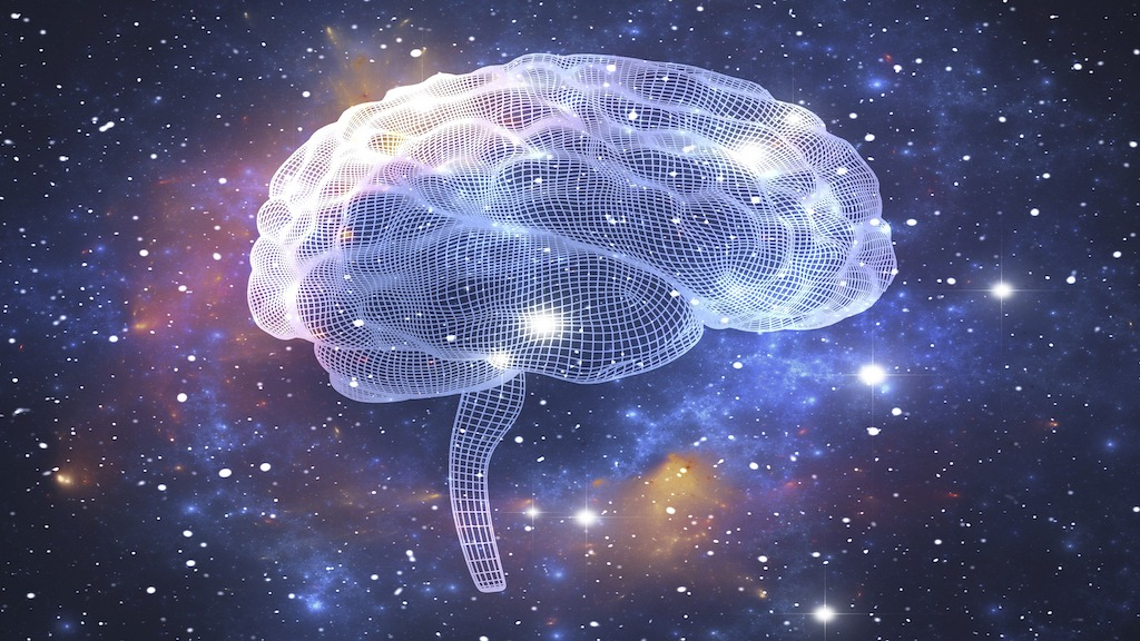 Is The Universe One Big Interconnected Neural Network?