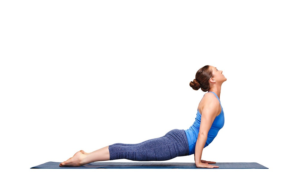 Urdhva Mukha Svanasana: Upward Facing Dog Pose