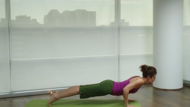 article-migration-image-187-asana-anatomy-chaturanga-dandasana.jpg