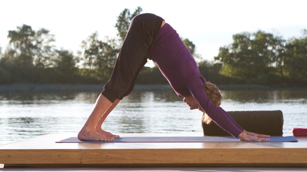 5 Things Every New Yogi Needs to Know