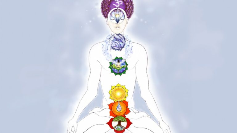 article-migration-image-790-an-introduction-to-the-chakras.jpg