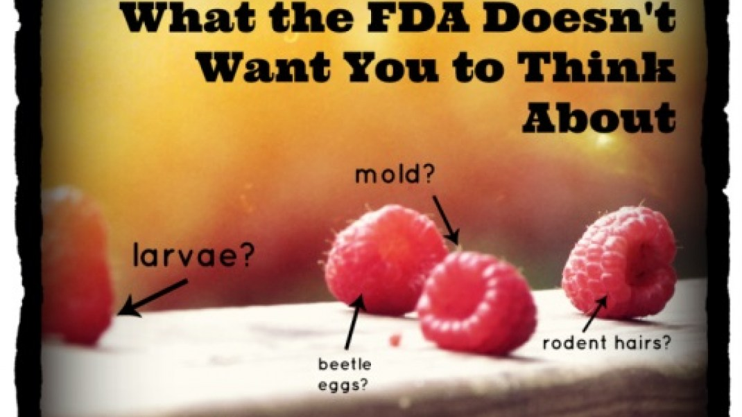 10 Gross FDA Regulations the Government Doesn't Want You to Think About