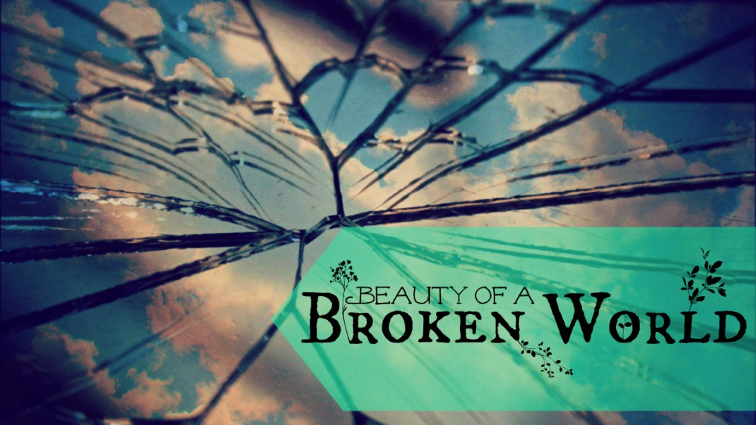 Beauty of a Broken World