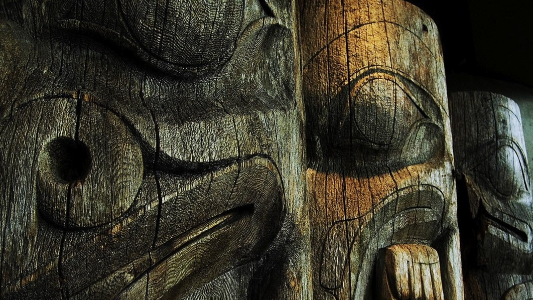 Crocodiles and Plant Medicine: Lessons of the Modern Shaman