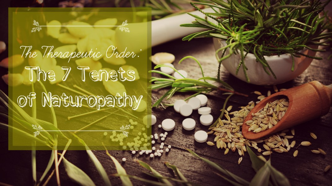 The Therapeutic Order: 7 Tenets of Naturopathy