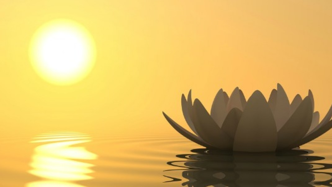 the laws of love 10 spiritual principles that can transform your life