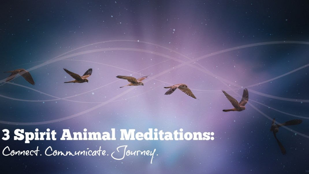3 Spirit Animal Meditations
