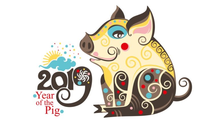 chinese-zodiac-sign-pig-2019-happy-chinese-new-year-2019-year-of-the-vector-id1059745816