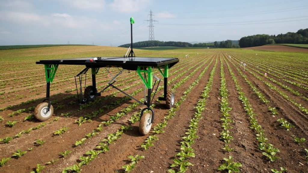 This Autonomous Robot Can End Mass Spraying of Herbicide on Crops