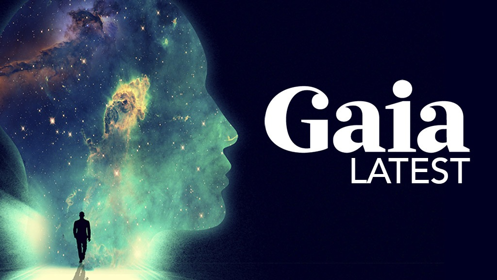 Gaia | Latest