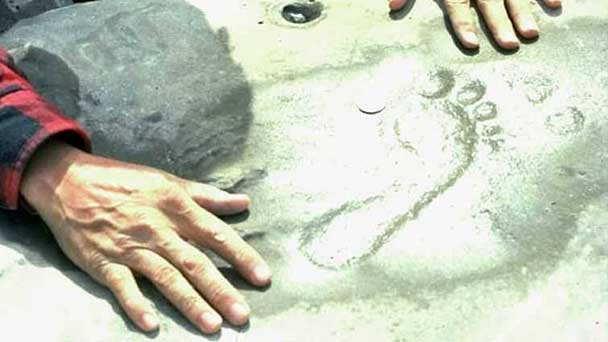 Man's hands on ground observing a human footprint