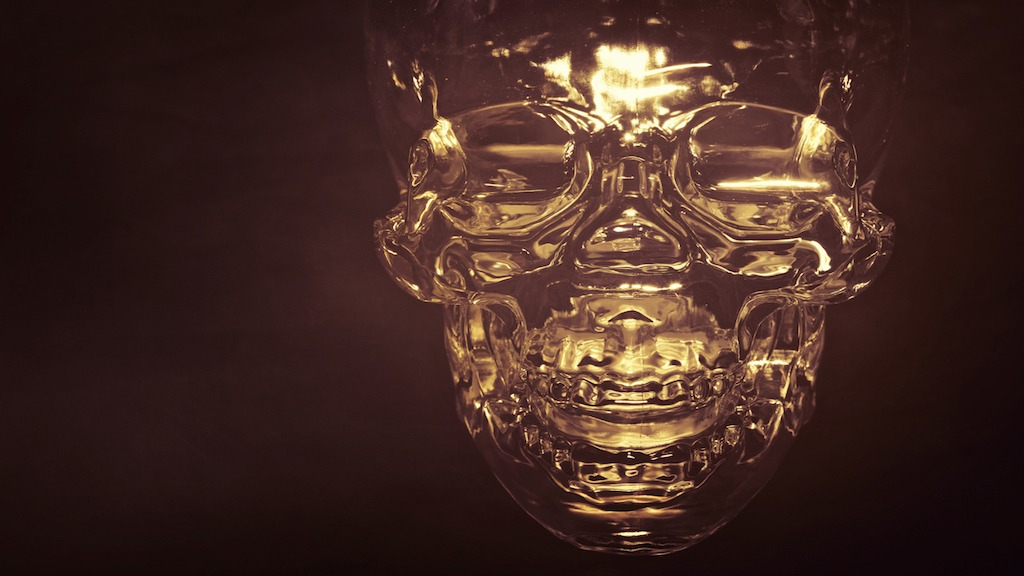 The Legend of Crystal Skulls Emerges From the Mayan Jungle
