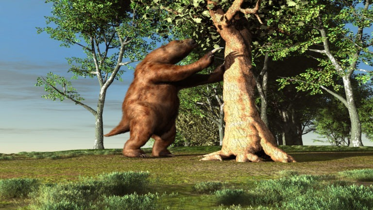 3d illustration of a giant sloth