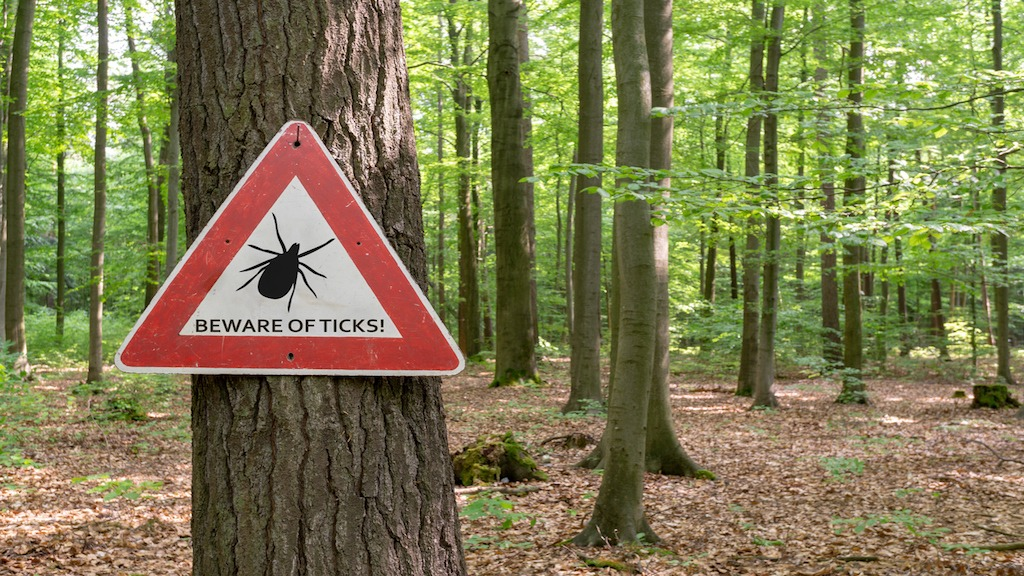 Weaponized Ticks: Is Lyme Disease an Escaped Government Bioweapon?