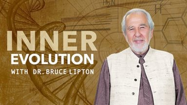 Dr. Bruce Lipton and Inner Evolution show logo