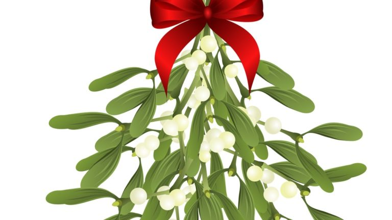 Something To Kiss About Mistletoe May Actually Treat Cancer Gaia