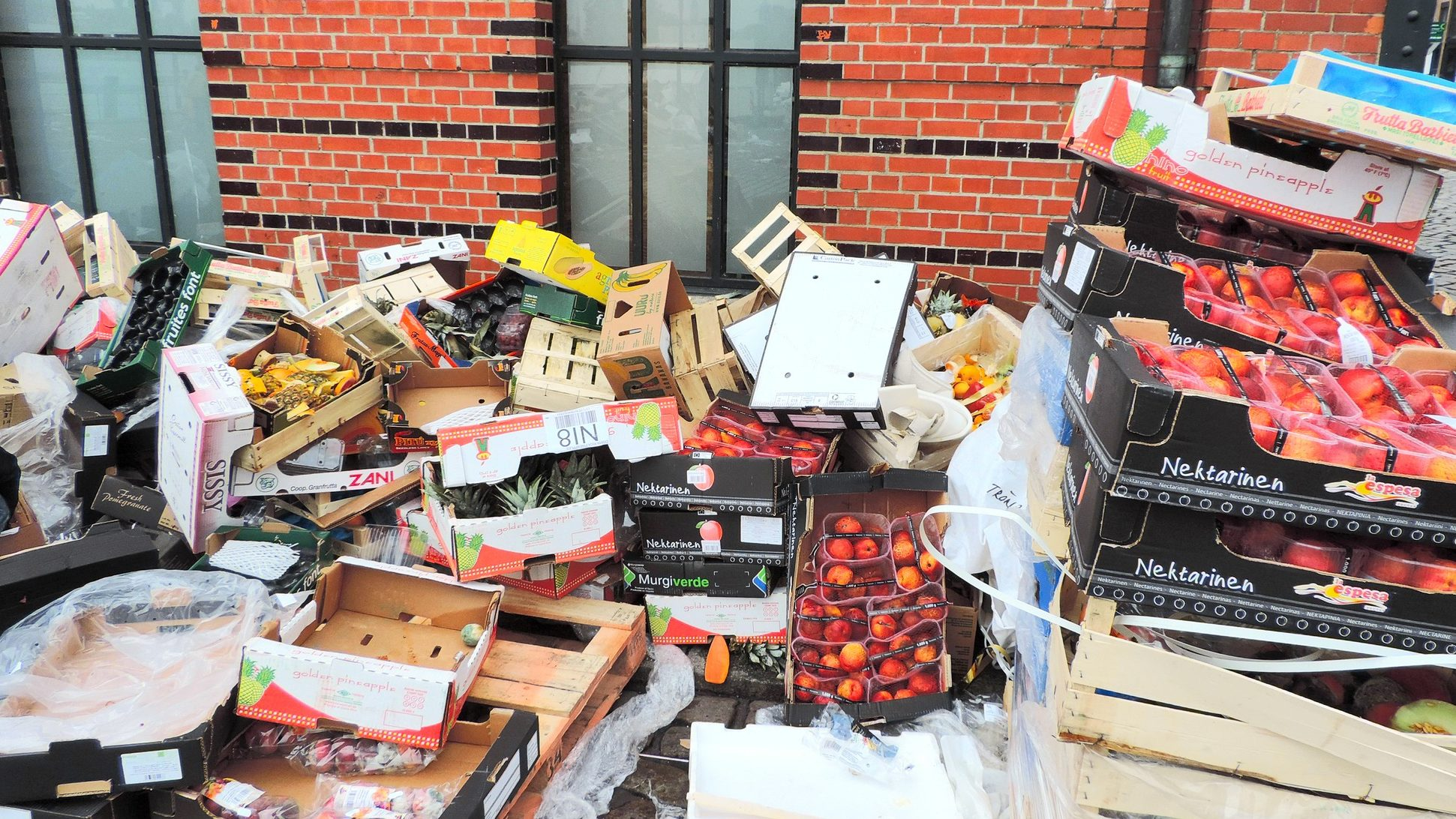 We Can Easily Solve The Problem of Food Waste