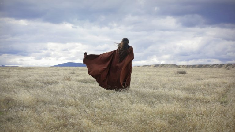 A girl wearing a flowing cloak standing in front of a stormy sky and dead, blowing grass. This would be an epic shot for a quote about something epic or stormy. Thinking about the meaning of life, facing life alone, fighting through it all, something like that.